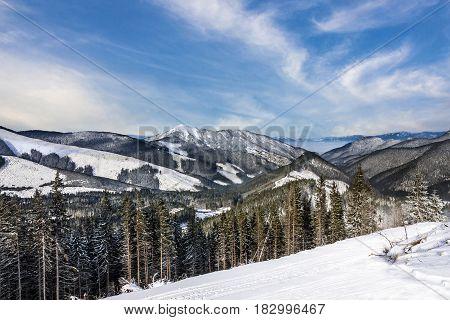 Winter resort Tatry landscape forest in Slovakia