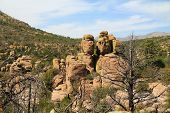 Echo Canyon rock hoodoos formation in Chiricahua National Monument near Wilcox, in southern Arizona, USA. poster