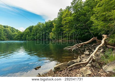 Lake Among Primeval Beech Forest. Morske Oko Located In Vihorlat Mountains. Beautiful Nature Of Slov