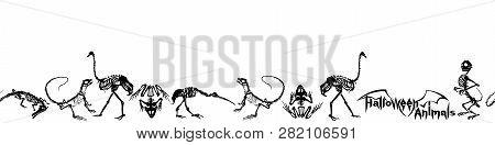Halloween Animals - Black Skeletons Of Reptiles (crocodiles, Lizards, Frogs), Monkeys And Birds (ost