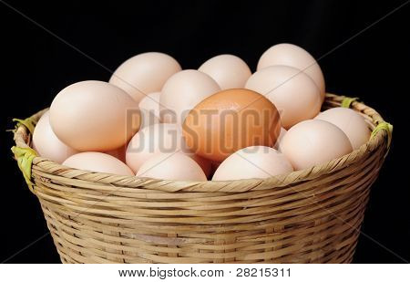 Risk management concept of all eggs in one basket