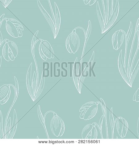 Snowdrop Flower Graphic Color Seamless Pattern Sketch Background Illustration Vector