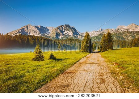 Idyllic alpine valley on a sunny day. Locations place Durmitor National park, village Zabljak, Montenegro, Balkans, Europe. Inspirational wallpapers of nature. Discover the beauty of earth.