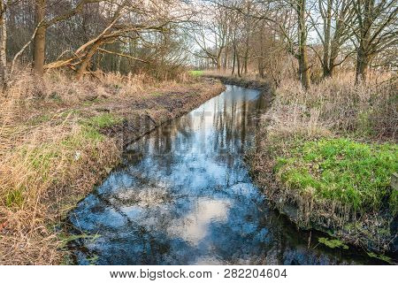 Meandering Brook In A Dutch Forest In The Winter Season. The Photo Was Taken In The ´binnenpolder´ N