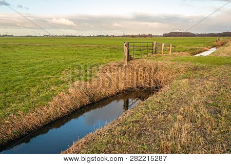 Typical Dutch Polder Landscape In Autumn. Diagonal In The Picture Is A Ditch With A Mirror Smooth Re