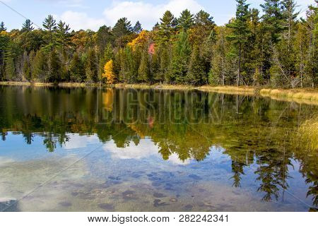 Forest Reflections In Pond. Beautiful Lush Forest Foliage Reflected In The Water Of A Remote Norther