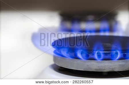 Gas Burns In The Gas Stove Burner. Blue Fire Burning Natural Gas.