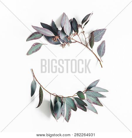 Eucalyptus Leaves On White Background. Wreath Made Of Eucalyptus Branches. Flat Lay, Top View, Copy