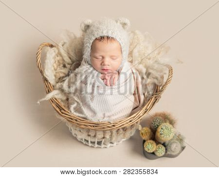 Little baby in cute white knitted beanie with ears and covered in light pink coverlet sweetly sleeping in the basket with cactus nearby