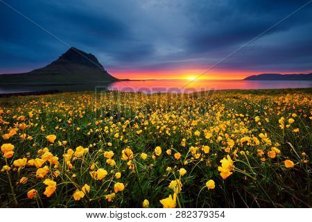 Splendid Iceland landscape with awesome Kirkjufell volcano at sunset. Location place Snaefellsnes peninsula, Iceland, Europe. Scenic image of the exotic summer scene. Discover the beauty of earth.