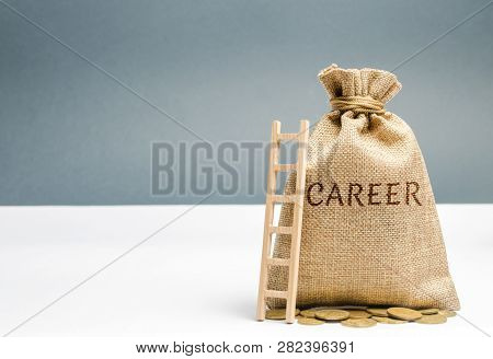 Money Bag With The Word Career And A Wooden Ladder. Self-development And Leadership Skills. Career L