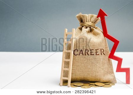 Money Bag With The Word Career And A Ladder With Up Arrow. Self-development And Leadership Skills. C