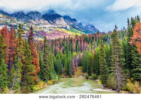 Journey to a fairy tale. Grand Autumn in the Rockies of Canada. The picturesque river among the mountains and colorful autumnal coniferous forests. The concept of active, photo and eco-tourism