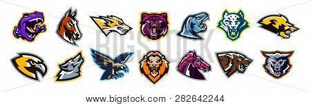 Set of animal logos. Bear, dinosaur, eagle, leopard, wolf, horse, fox, lion, grizzly, raptor, hawk, jaguar, cat, lynx, leo, stallion, birds. Sports mascots, colorful collection, vector illustration. poster