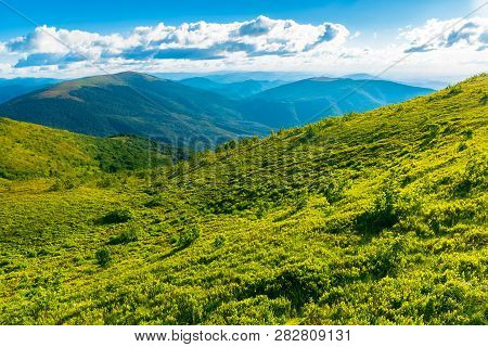 Beautiful Landscape In Mountains. Grassy Meadow On The Hillside. Sunny Weather. Fluffy Clouds On The