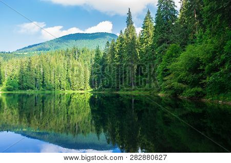Lake Among The Pine Forest. Beautiful Nature Scenery In Mountains. Green Environment Concept. Summer