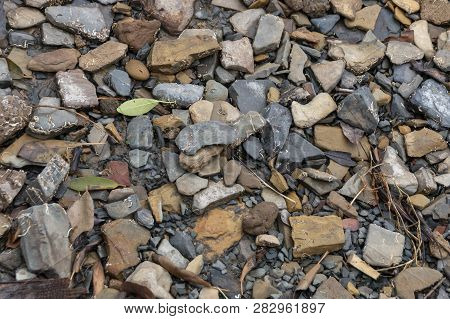 A Close Up View Of Rock, Stones And Plant Matter Next To A River Bank