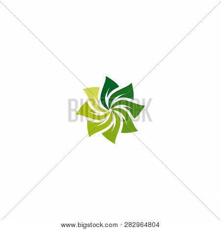 Green Vector Leaves Concept. Leaves Icons Art Image. Simple Leaves Abstract Flower Gradation Green C