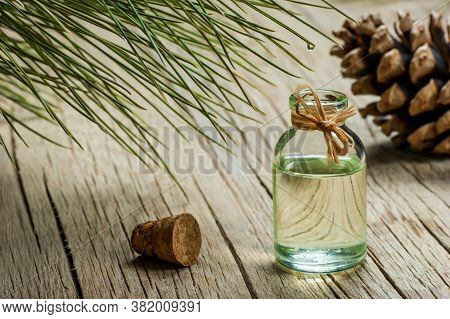 Pine Turpentine Essential Oil In Glass Bottle With Pine Coniferous Leaves And Pine Cone On Rustic Ta