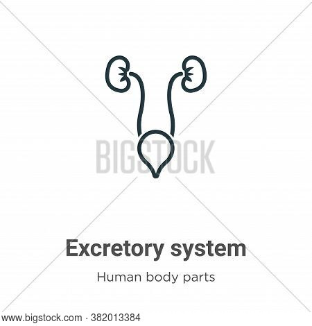 Excretory system icon isolated on white background from human body parts collection. Excretory syste