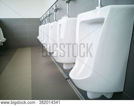 Public Toilet Room - Comfort Male Toilet Urinal, White Urinals In Public Toilet,restroom ,water Clos