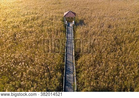 Aerial View Of Wooden Walkway With Gazebo In Yellow Field