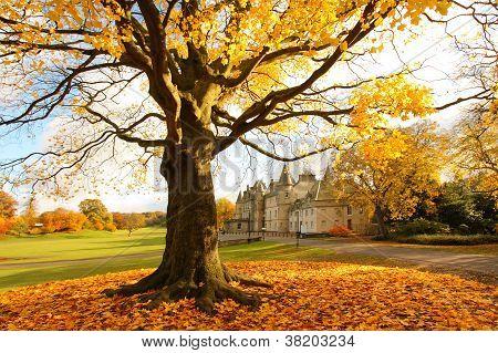 Callendar House in Autumn Falkirk Scotland UK