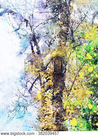 Trees In Autumn With Yellow Leaves, Fall Season Image, Digital Watercolor Painting