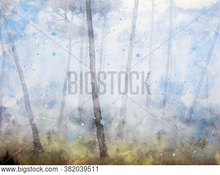 Digital Watercolor Painting Of Trees With Fog In The Morning, Landscape Image