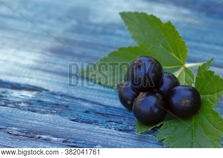 Berries. Black Currant Berries On A Wooden Table. Black Currant Close-up. Fruit Background. Horizont