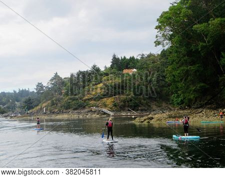 Tod Inlet, British Columbia, Canada - July 4th, 2020: A Group Of People On Their Paddle Boards Paddl