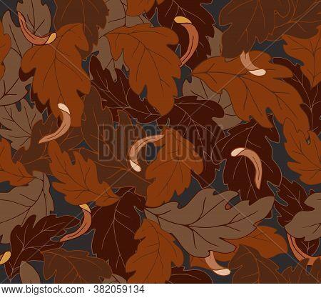 хризантемы 4