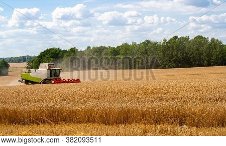 Combine Harvester Harvests Ripe Wheat In Field, Against Of Trees And Blue Sky With Clouds Background