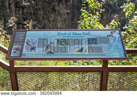 Mesa Falls Scenic Byway, Idaho / Usa - July 20, 2014:  A Sign Showing Information About The Birds Th