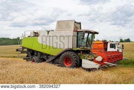 Collecting Wheat Grain With A Modern Combine, Unloading Seeds Into A Truck. Harvesting Grain Crops W