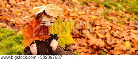 Kids Play In Autumn Park. Children Throwing Yellow Leaves. Child Boy With Oak And Maple Leaf. Fall F