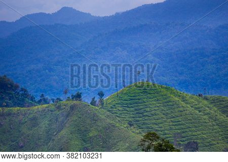 Scenery Of High Green Mountain, Angle View, Under The Clouds Sky In Tropical Moist Montane Forest, N