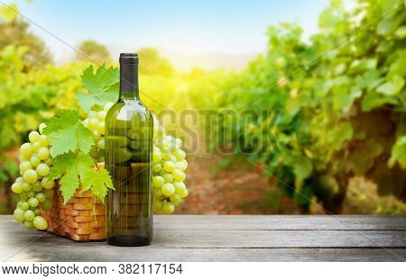 White grapes in basket and white wine bottle on wooden table in front of landscape of vineyard. French countryside valley