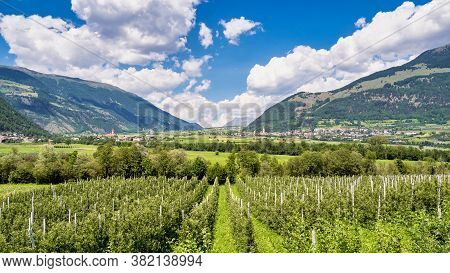 Val Venosta, Vinschgau, Alto Adige, Italy. View Over Mals In South Tyrol, Italy Near The Border To A