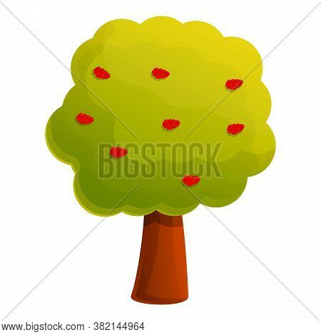 Rowan Tree Icon. Cartoon Of Rowan Tree Vector Icon For Web Design Isolated On White Background