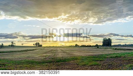 Late Afternoon Landscape On A Farm In The State Of Rio Grande Do Sul In Brazil