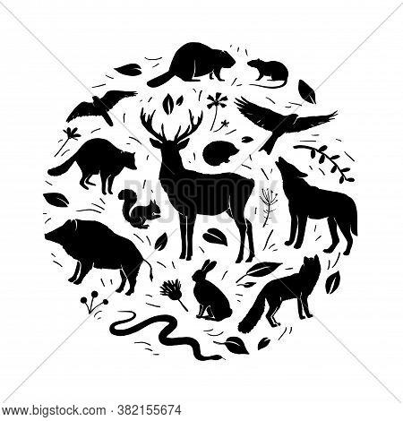 Vector Forest Animals Collection In Circle Frame. Flat Animals Silhouettes In Black Color. Design Fo