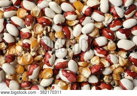 Mixed Vegetable Seeds As Background, Top View