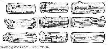 Logs. Stumps And Trunks Of Trees. Outline Hand Drawing. Isolated Vector Objects On A White Backgroun