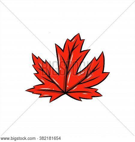 Maple Leaf Vector Illustration, Canadian Vector Symbol, Red Maple Leaf, Canada Symbol, Red Canadian