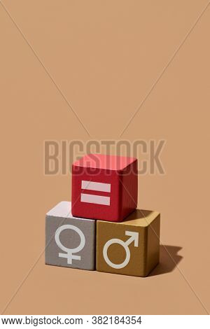 depiction of the gender equality made with some toy blocks: one with a female gender symbol, another one with an equals sign and another one with a male gender symbol, on a light brown background