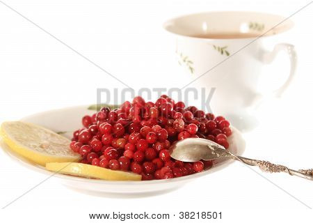 Soaked Cowberries With Lemonl Or Don't Have Day's Illness