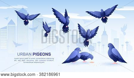 Pigeons Flat Composition With Cityscape Background Silhouettes Of Birds And Editable Text With Image