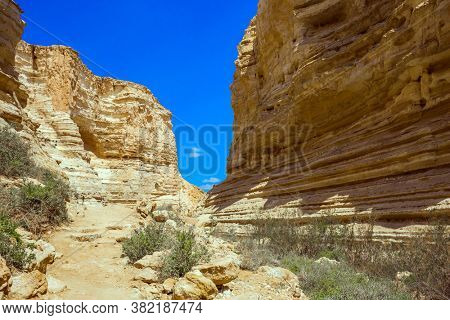 The magnificent gorge Ein Avdat is the most beautiful in the Negev desert.  Israel. The ravine is formed by the waters of the Qing River. Start route. The concept of active and photo tourism