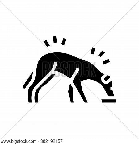 Dog Eating Food Glyph Icon Vector. Dog Eating Food Sign. Isolated Contour Symbol Black Illustration